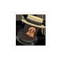 Quality 6 J.Axer's Dapper Topper (134)