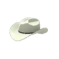 """Falco`s Richman Cowboy Hat"""